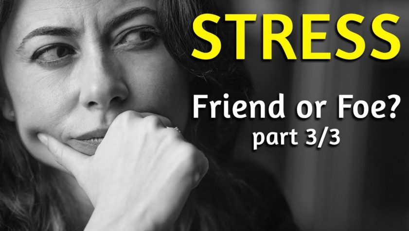 STRESS: Friend or Foe? Part 3/3